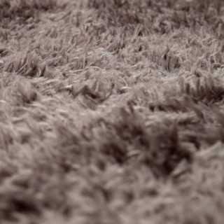 Vue détaillée du tapis MIKY