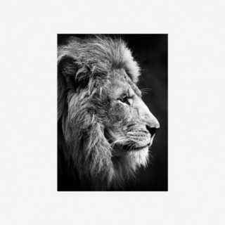 Vue de face de la toile noir et blanc LION