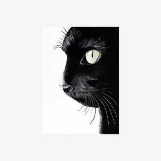 Vue de face de la toile chat