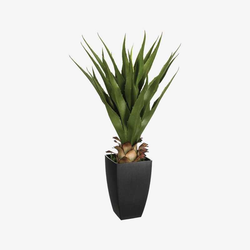 Vue de face de la plante artificielle CHIC agave