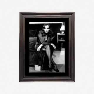 Vue de face de l'affiche Romi Schneider