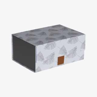 Vue de face de la boite ELVA